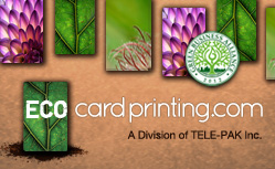 Eco-Friendly Alternatives to PVC Plastic Cards
